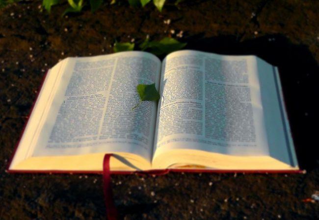 Пожалуйста, не читайте Библию…